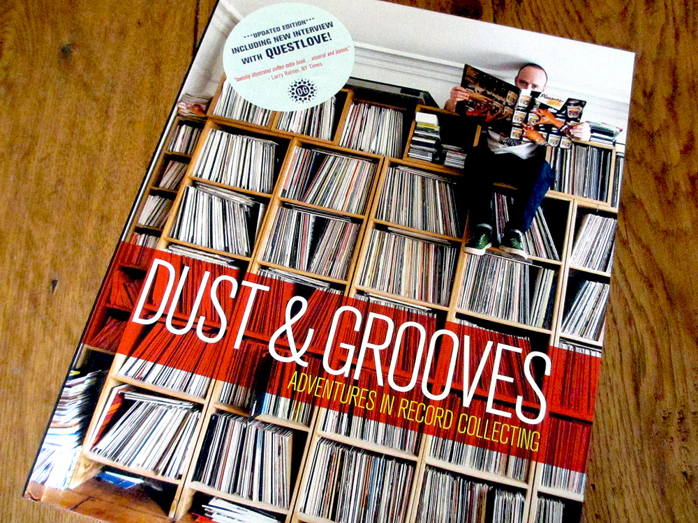 Dust & Grooves book cover